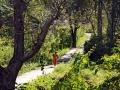 Andamanlar Güneş Adası - Sayı 243