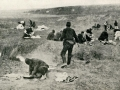 Balkan Göçü: 1912 - 2012 Yüz Yıllık Sürgün - Sayı 236