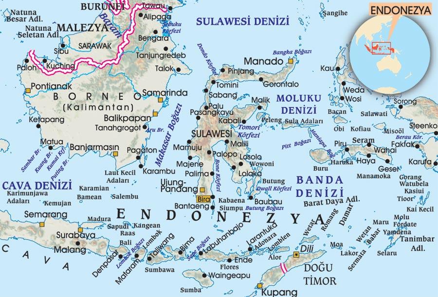 Endonezya, Mercan Gezegeni - Sayı 251