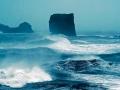 Kayıp Deniz - Sayı 239