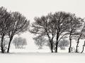 Kış Vadileri - Sayı 265