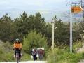 İstiklal Yolu (95 km.)