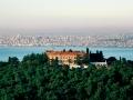 Şehrin Kadim Sakinleri - Sayı 261