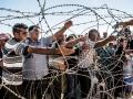 Sınırda Kobani - Sayı 260
