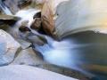 Suyun Kudreti - Sayı 251