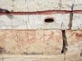 Tarihe Tutulan Işık; Çatalhöyük - Sayı 271