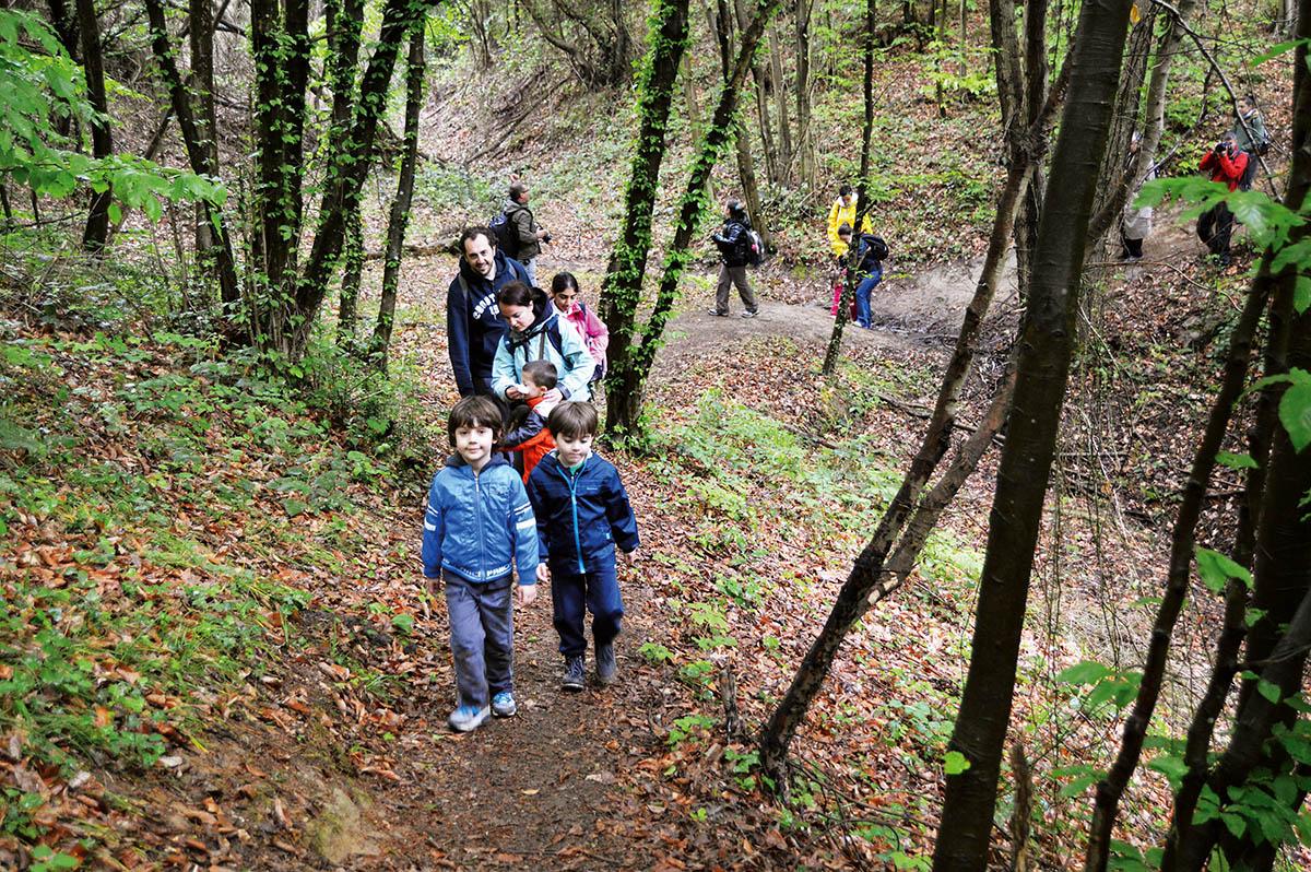 Belgrad Ormanı / Sarıyer-Eyüp, İstanbul