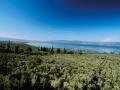 İznik Gölü / Bursa