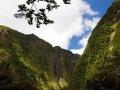 Vanilya Adası Reunion - Sayı 249