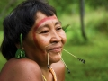 Yerliler Doğa Savaşçıları - Sayı 245