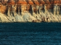 Zarif  Kanatlar, Balıkçılar - Sayı 258
