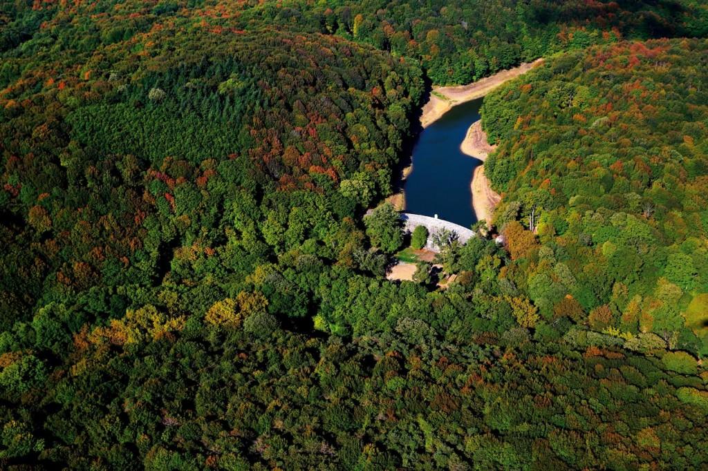 Belgrad Ormanı, UNESCO Listesine Doğru