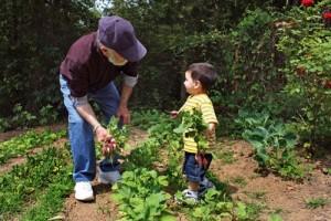 Çocuklar da herhangi bir yönlendirme olmadan çevrelerindekilere yardım ediyor.