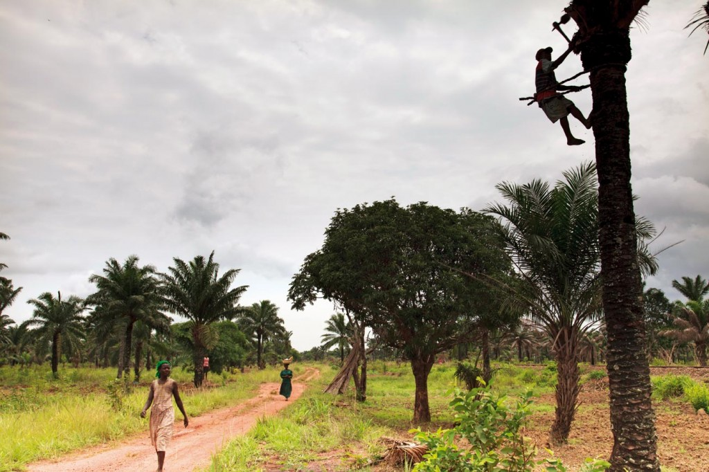 Nijerya Nehir İnsanları
