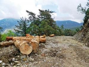 Babadağ'a yeni yapılan yol, yamaç paraşütü etkinliklerinin tüm yıla yayılmasını amaçlıyor ama dağın doğal yapısına zarar veriyor.