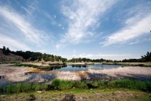 İklim koşulları nedeniyle Türkiye'de turbalık alanlar oldukça kısıtlı. Turbalık ve turbalığa benzer oluşumlar yakın zamana kadar yaklaşık 22 bin hektardı ama günümüzde gerçekten canlı denebilecek alan 2 bin 500-3 bin hektar kadar. Denizli'nin Bozkurt ilçesindeki Karagöl, Anadolu'da geriye kalan önemli turbalıklardan.