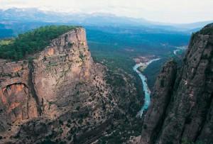 Birbiriyle ilişkili çok sayıda ekosisteme sahip bir alan Köprülü Kanyon Milli Parkı. Antalya'nın Manavgat ilçesi sınırları içindeki alan 1973 yılında milli park ilan edildi.