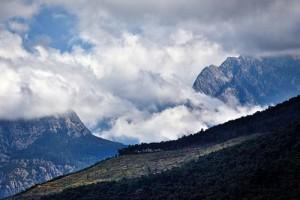 """Geyik Ormanı Geyikbayırı, Antalya merkez ilçenin sınırları içinde kalan, Beydağları'nın önemli zirvelerinden Geyik Sivrisi'nin eteklerinde. Dağın Geyikbayırı'na bakan bölümü kızılçam ormanlarıyla kaplı. Yöredeki köylüler eskiden dağda çok sayıda """"geyik"""" olduğunu ama zamanla azaldıklarını anlatıyor. Geyik dedikleri dağkeçisi (Capra aegagrus) günümüzde koruma altında ve avlanması yasak."""