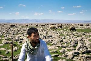 Karadağ'ın izolları Diyarbakır'ın Çınar ilçesi köylerinde yaşayan İzol aşireti mensupları geçimini çoğunlukla hayvancılıktan sağlıyor. Çınar çevresindeki köylerin coğrafi yapısı, volkanik Karacadağ'ın püskürttüğü lavlardan dolayı taşlık bir görünüme sahip.