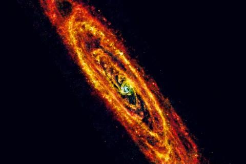 Soğuk Andromeda