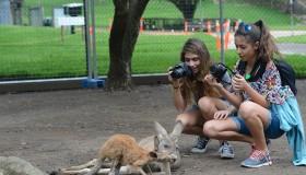 Avustralya Yeniden Keşfedildi!