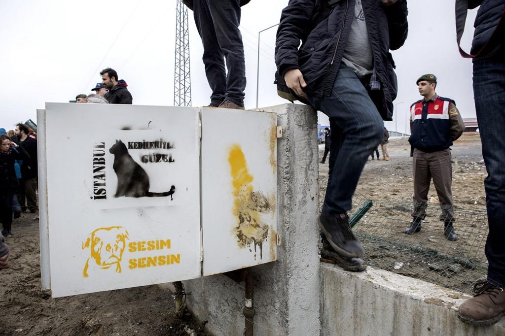 Hayvan Hakları Savunucularından Kısırkaya'da Eylem