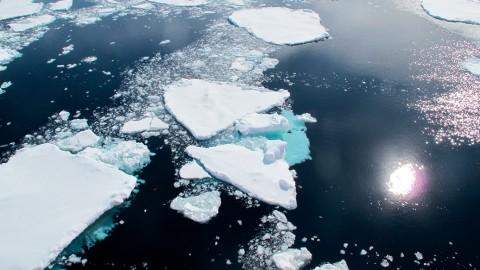Antarktika: Kutuplar Isınırken