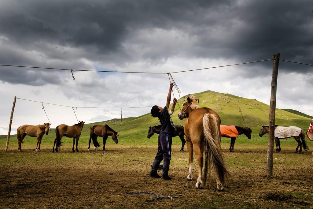 Moğolistan: Bozkır'ın Sevinci