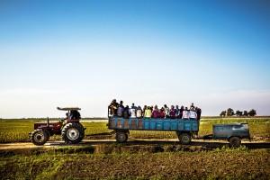 Seasonal Agricultural Workers | Atlas |