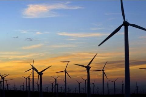 Bodrum'da Rüzgâr Santralı Tartışması