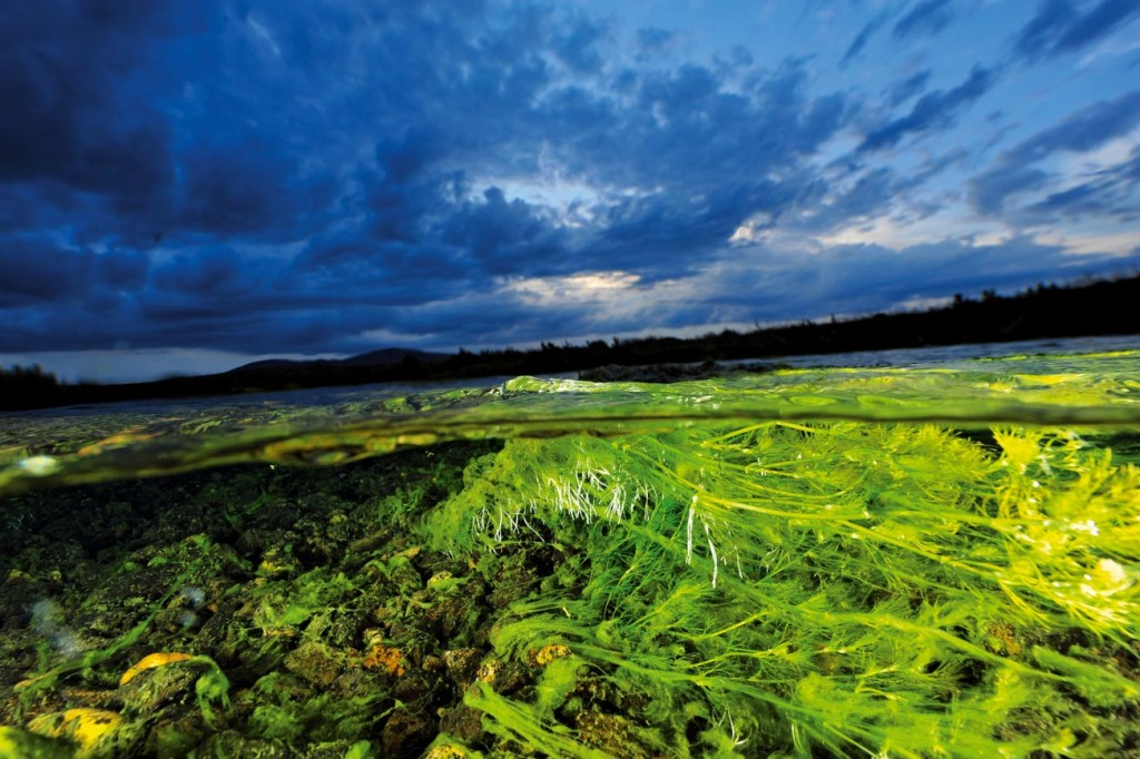 Van Gölü Havzası, Derin Doğu