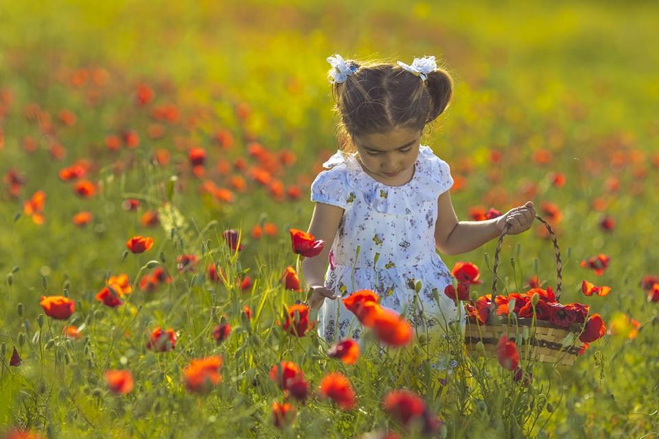 Bahar'ın Renkleri