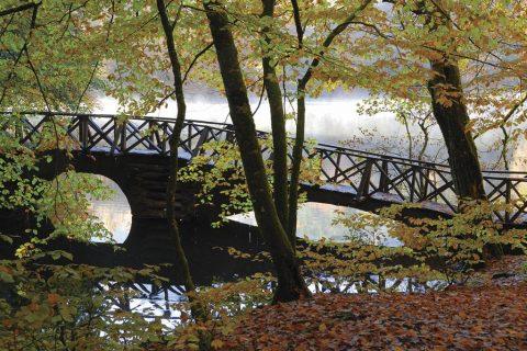 Sonbaharın 10 Yürüyüş Rotası