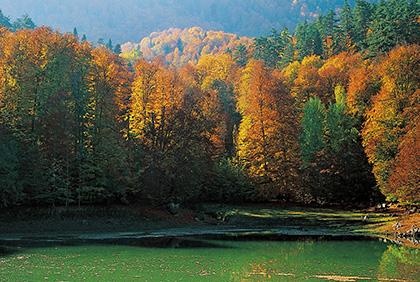 Sonbaharın En Güzel Fotoğraf Noktaları | Atlas | yarışma