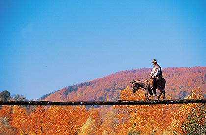 Sonbaharın En Güzel Fotoğraf Noktaları | Atlas | Keşfet