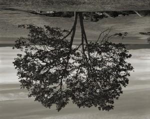 RODNEY GRAHAM | Atlas |