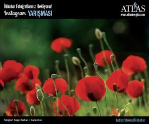 ilkbahar | Atlas |