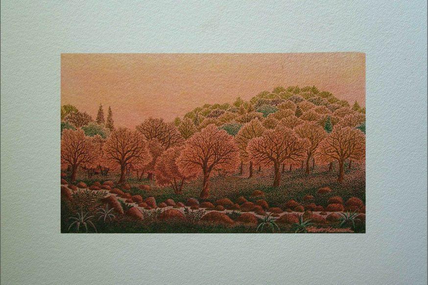 Karzek'in Zeytin Ağaçları