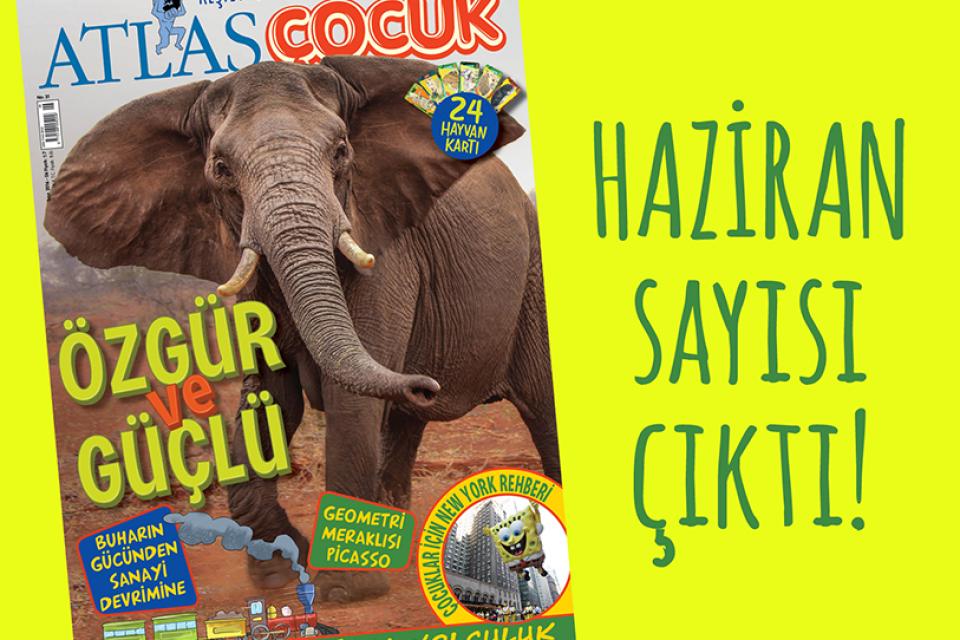Küçük Kaşiflerin Dergisi
