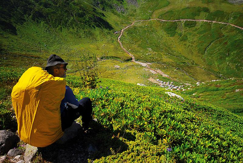 Rize'nin Ardeşen ilçesinden 45 kilometre uzaklıkta bulunan İntor-Şorak yaylaları arasındaki eski patikanın ilk bölümü ormangülleri arasından geçiyor.