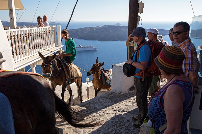 """Santorini'de günbatımının en iyi gözlemlendiği yer olan Oia'ya teleferikle ve """"adanın geleneksel ulaşım aracı"""" eşeklerle çıkılıyor."""