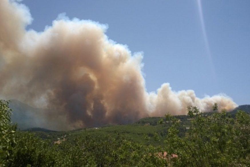 Orman Yangınları Karnesi