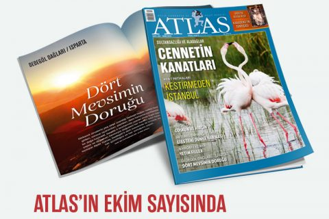 ATLAS'IN EKİM SAYISI