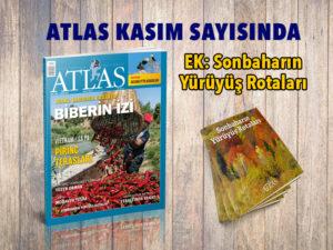 Manset_296 | Atlas |