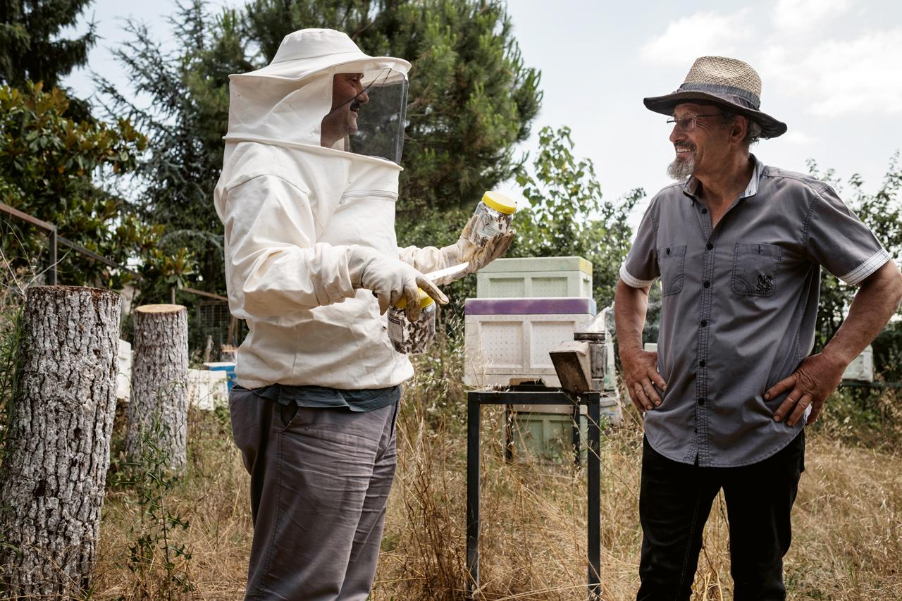 Metropolün arıları | Atlas | Gündem