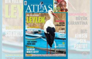 atlas-kapak2 | Atlas |