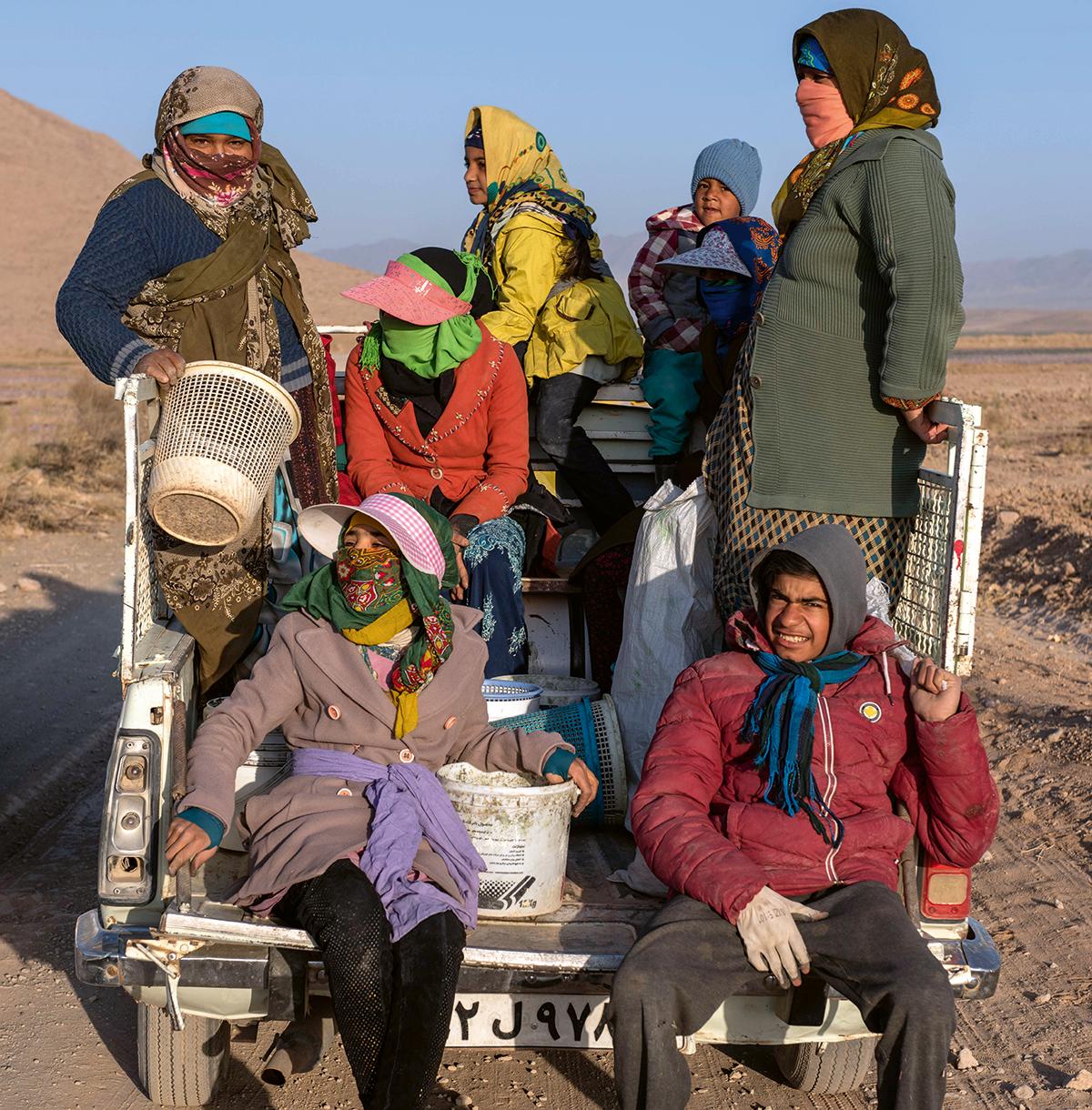 İran'ın kırmızı hazinesi: Safran | Atlas | Keşfet